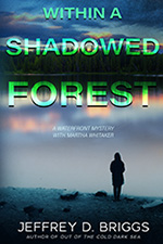 Jeffrey Briggs - Within a Shadowed Forest